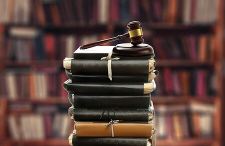 Court System and Legal Profession